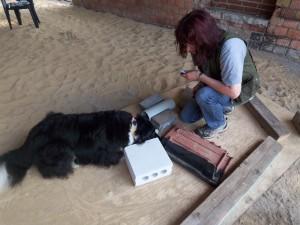 Objektsuche in der Hundeschule in Greven