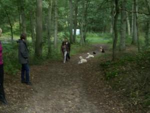 Spiel & Spaß für Hunde in Greven